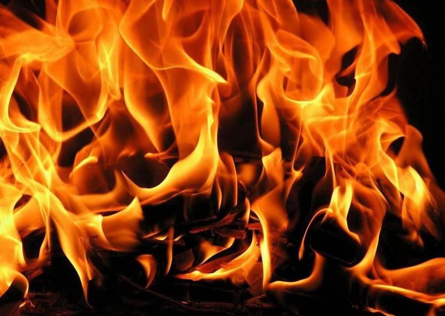 ВРечицком районе изгорящей фермы эвакуировали 192 коровы