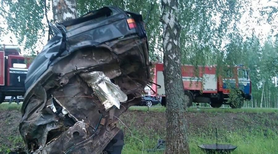 ДТП вХотимском районе: Фольксваген вылетел с дороги иврезался вдерево